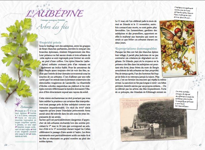 plante-feerique-aubepine